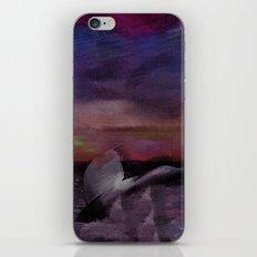 Whale Tale iPhone & iPod Skin