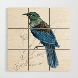 Tui, New Zealand native bird Wood Wall Art