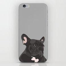 French Bulldog - Grey iPhone Skin