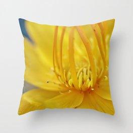 Yellow flower blue sky Throw Pillow