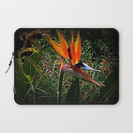 Bird of Paradise Flower Laptop Sleeve
