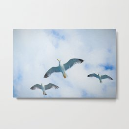 Three Sea Gulls Flying Oil Painting Metal Print