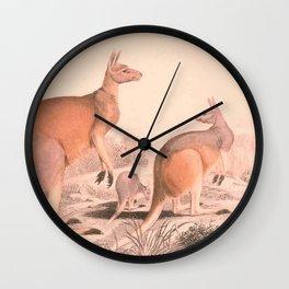 Vintage Kangaroo Family Illustration (1849) Wall Clock