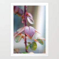 sparkles Art Prints featuring Sparkles by Katie Kirkland Photography