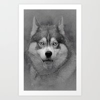 husky Art Prints featuring husky  by Doug McRae