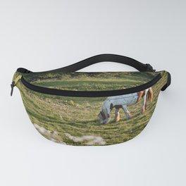 Summer Evening Horse Fanny Pack
