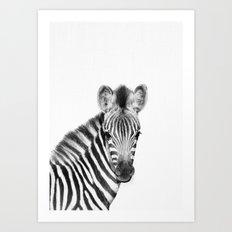 Baby Zebra [safari animals_cute animals_baby animals_little animals_african animals] Art Print
