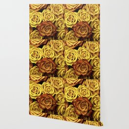 Golden Yellow Roses Pattern (Color) Wallpaper