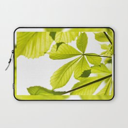 Aesculus horse chestnut foliage Laptop Sleeve