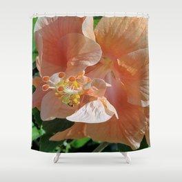 Peach godess Shower Curtain