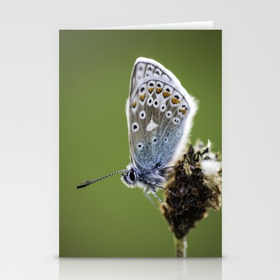 Common Blue Butterfly 2 Stationery Cards