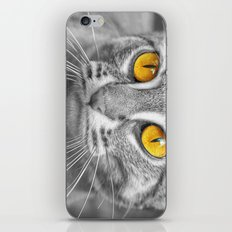RUSTY SPOTTED CAT iPhone & iPod Skin