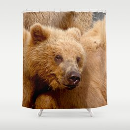 Brown Bear Grizzly Shower Curtain