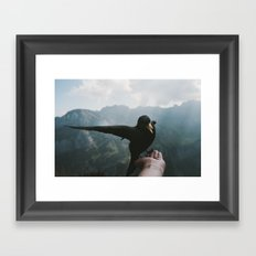 A wild Bird - landscape photography Framed Art Print