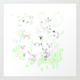 More sheeps Art Print