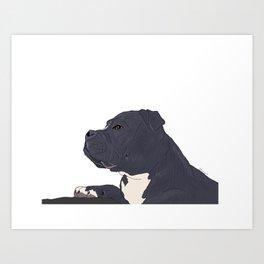 Jupiter the dog Art Print