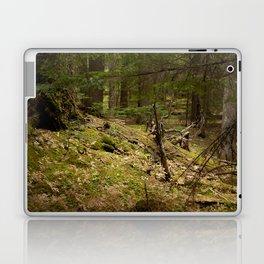 Forest Peace Laptop & iPad Skin