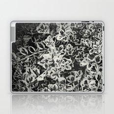 Six Feet Under II Laptop & iPad Skin