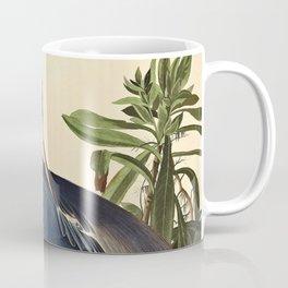 John James Audubon - Louisiana Heron Coffee Mug
