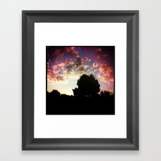 Sunset's Trees Framed Art Print