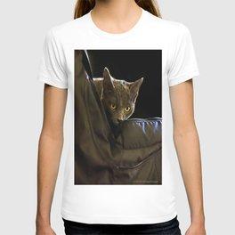 Curiosity Bagged T-shirt