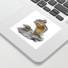 Chipmunk and mushrooms Sticker