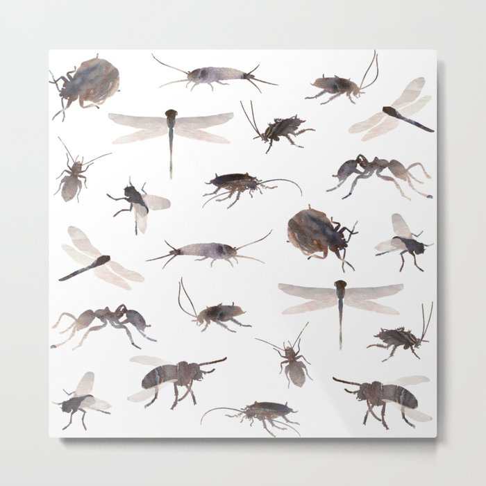 Insects Mix Metal Print