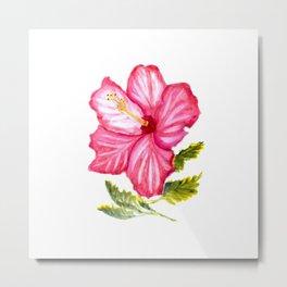 Pink hibiscus watercolor Metal Print