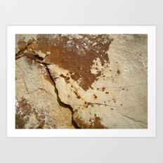 Stone 421  Art Print