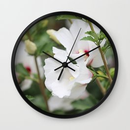 Rose of Sharon in July Wall Clock