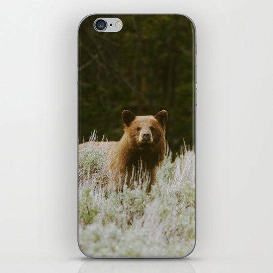 Bush Bear iPhone & iPod Skin