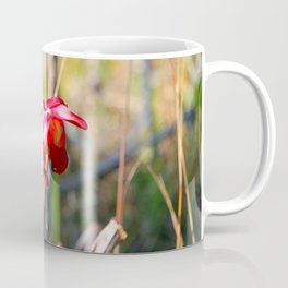 Pitcher Plant In Bloom Coffee Mug