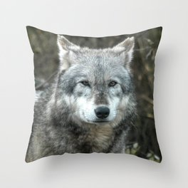 The Wolf Waits ... Throw Pillow