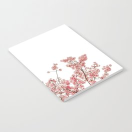 Cherry Blossoms (Color) Notebook