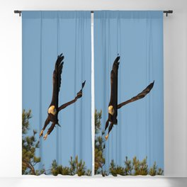 The Crow And Bald Eagle Blackout Curtain