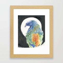 Nicobar Pigeon Framed Art Print
