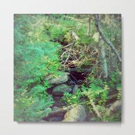Stream of Living Water Metal Print