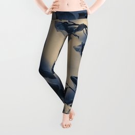 Bay leaves Leggings