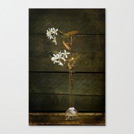 Shadbush Flowers Canvas Print