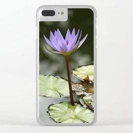 Beauty At The Pond Clear iPhone Case
