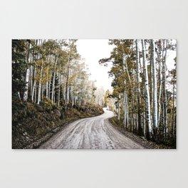 A Winding Autumn Road Canvas Print