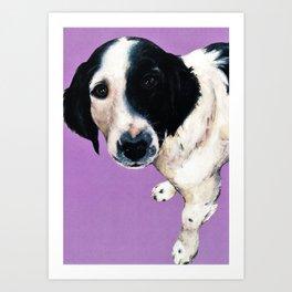 Charlie on lilac Art Print