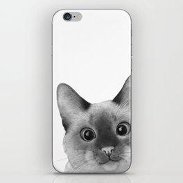 Siamese sneak-a-peek iPhone Skin
