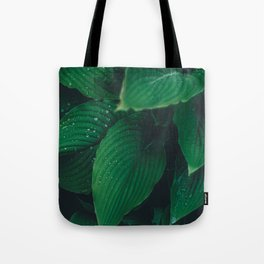 Moist Leaves Tote Bag