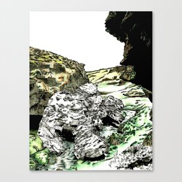 Entity Canvas Print