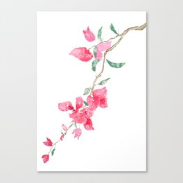 red  pink  bougainvillea watercolor Canvas Print