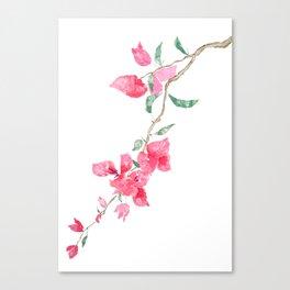 red  pink  bougainvillea watercolor Canvas Print