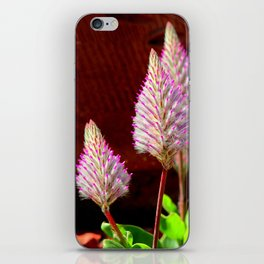 A Flurry Of Furry Flowers iPhone Skin