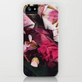 Seja II iPhone Case