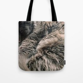 Moses the cat Tote Bag
